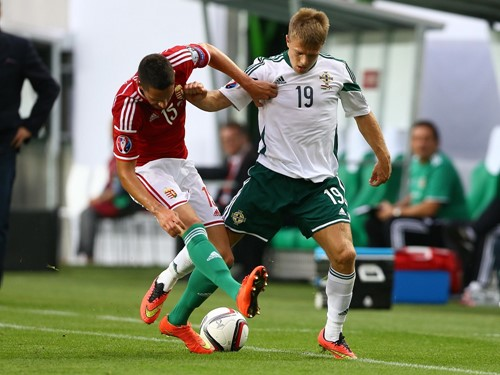 Hungary v. Northern Ireland 7th September 2014